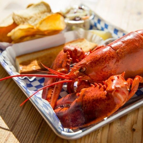 1 lb. lobster